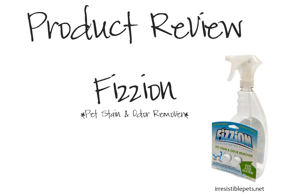 Fizzion_product_review