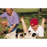 Summer Pet Health & Safety Resources