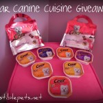 Closed. Giveaway! 2 Packages of Cesar Canine Cuisine