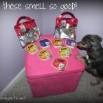 Review: Cesar's Canine Cuisine