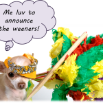 Announcing the Cesar Canine Cuisine Giveaway Winners!
