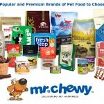 Closed – Review and Giveaway: Mr. Chewy Online Pet Retailer