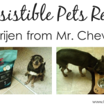 Review–Orijen Pet Food from Mr. Chewy