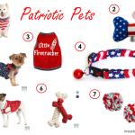 Patriotic Pet Clothes and Toys