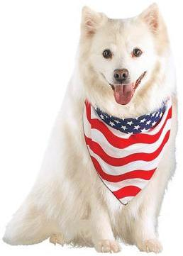 Pets Corner Dog Bandana