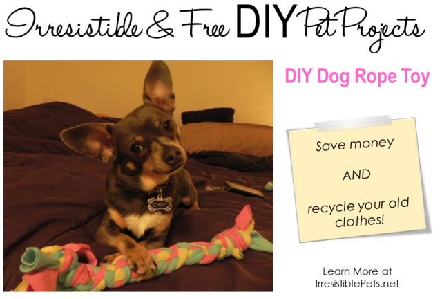 DIY Dog Rope Toy