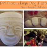 DIY Frozen Luau Dog Treats