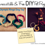 Irresistible and Free DIY Pet Projects: DIY Olympic Rings Dog Toy