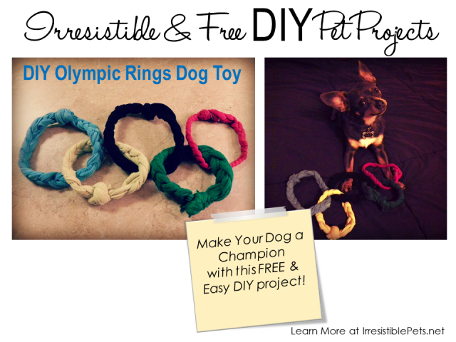 DIY Olympic Rings Dog Toy