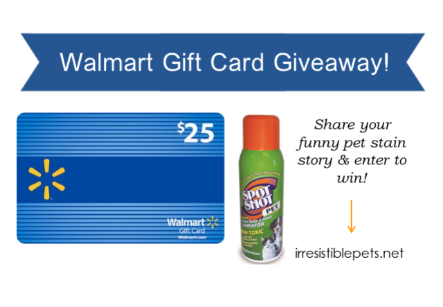 irresistible pets giveaways