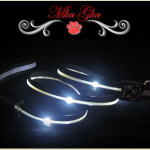Doggyloot Deal – $20 LED Leash with FREE Shipping!