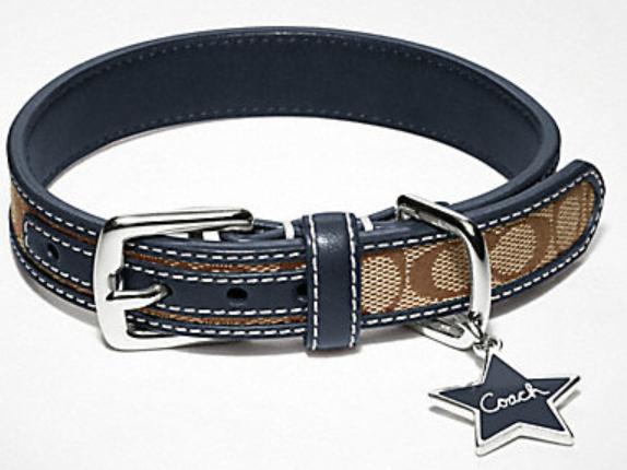 Coach Dog Collar And Leash