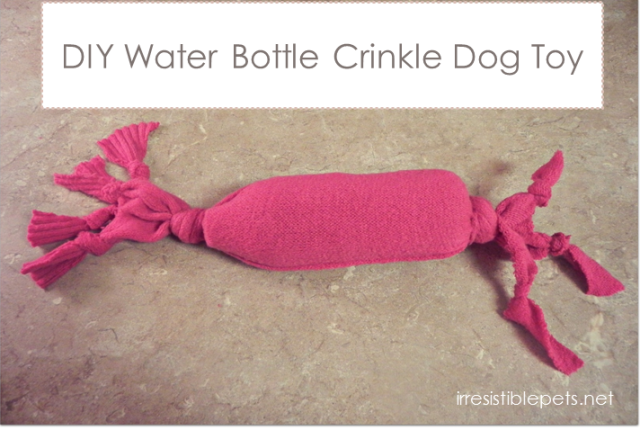 DIY Water Bottle Crinkle Dog Toy