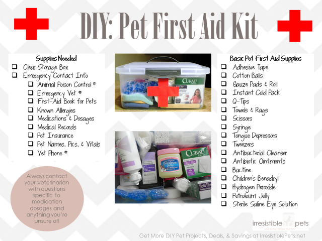 Diy Pet First Aid Kit Cheat Sheet