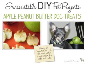DIY Apple Peanut Butter Dog Treats