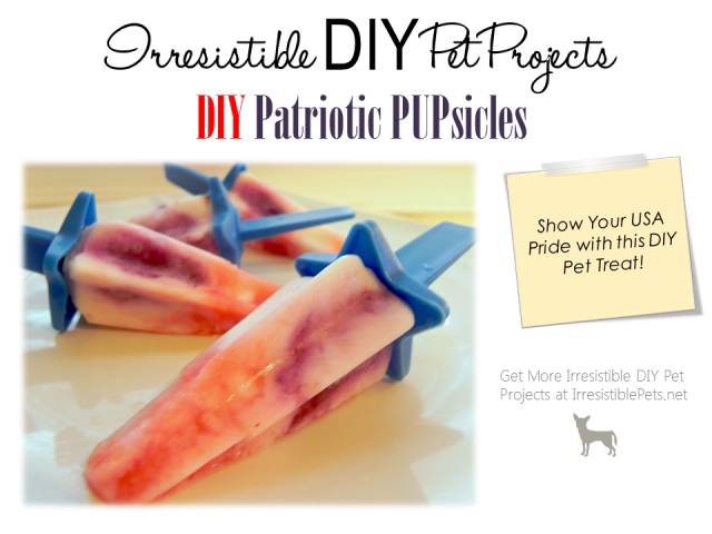 DIY Pet Project - Patriotic Pupsicles