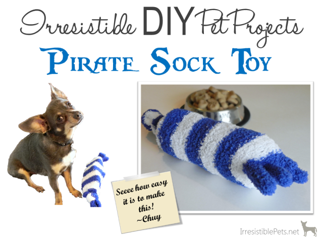 DIY Pet Projects - Pirate Sock Toy