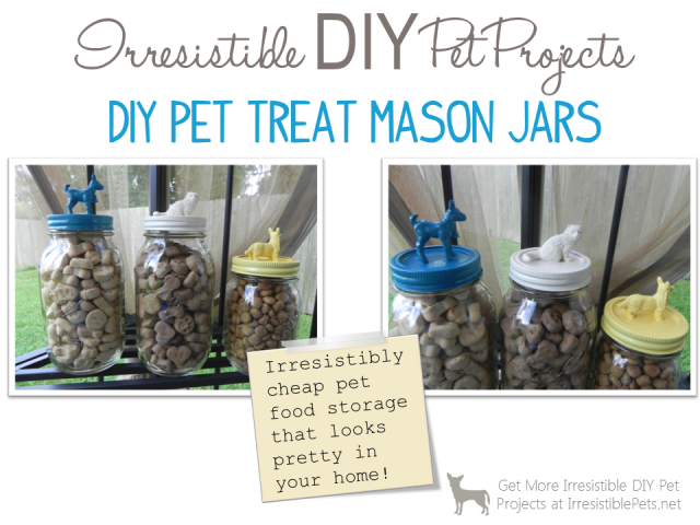 DIY Pet Treat Mason Jars - Irresistible Pets