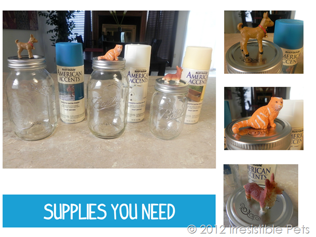 DIY Pet Treat Mason Jars - Supplies