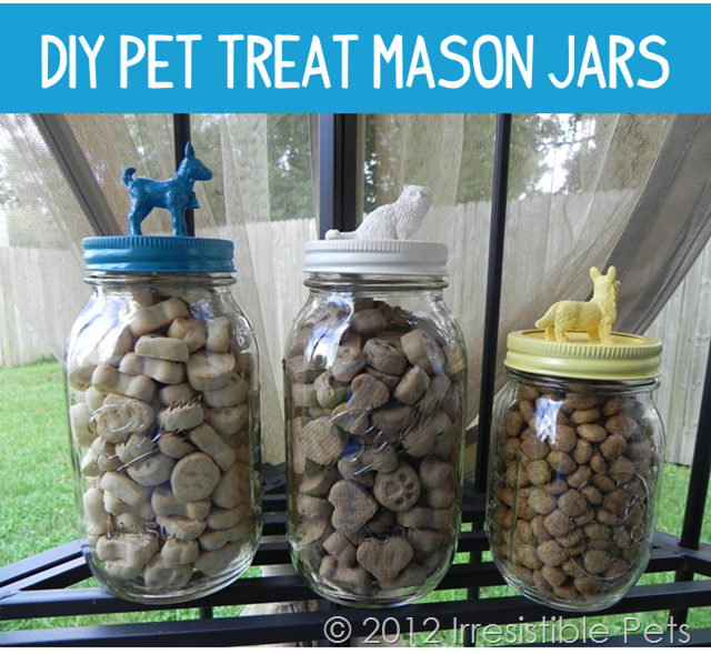 DIY Pet Treat Mason Jars
