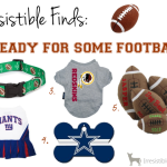 Irresistible Finds {Ready for Some Football!}