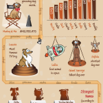 The Ultimate Dog Name Guide {Infograpic}