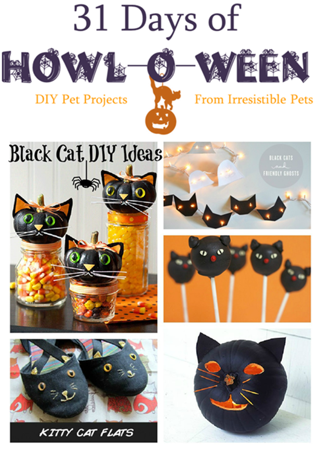 31 Days of Howloween - Black Cat DIY Ideas