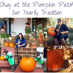 Howl-O-Ween {A Day at the Pumpkin Patch}