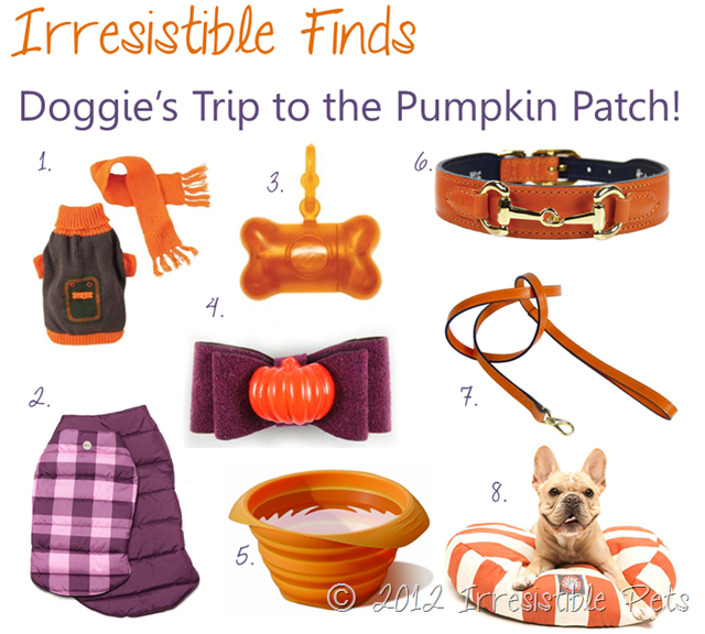 31 Days of Howloween - Irresistible Finds - Trip to the Pumpkin Patch