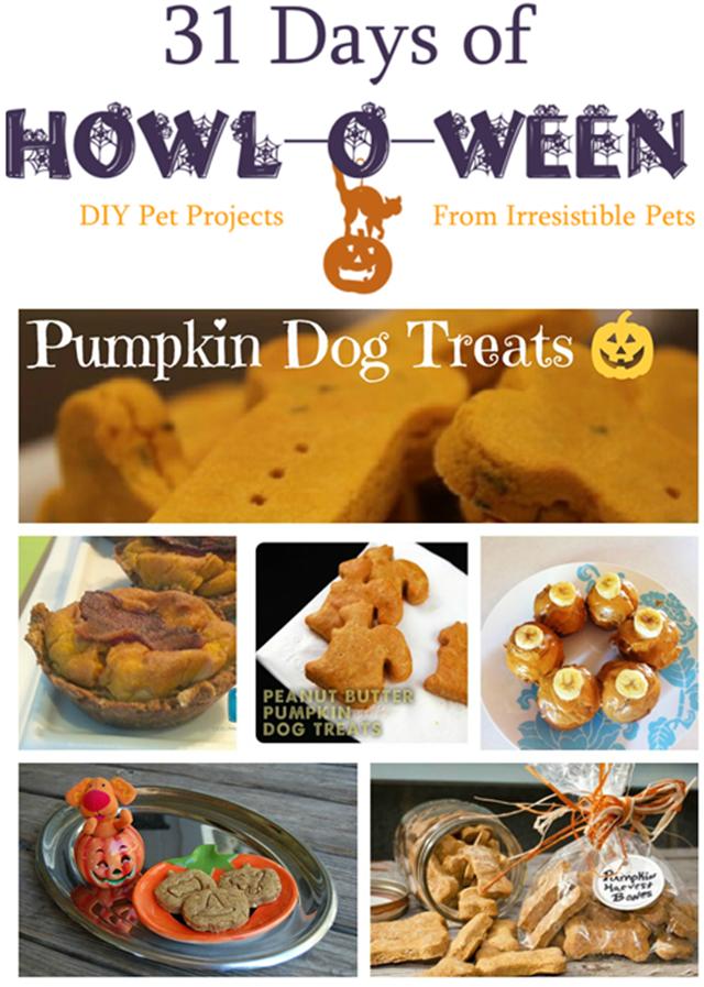31 Days of Howloween - Pumpkin Dog Treats