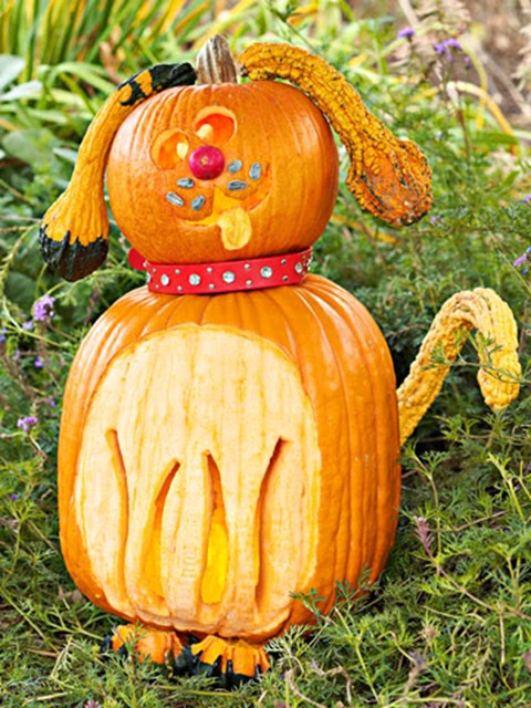 diy pet pumpkin carving ideas funny puppy - Funny Halloween Pumpkin Carvings
