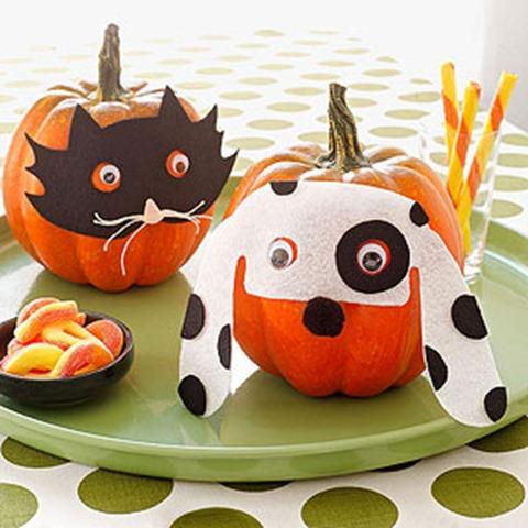 DIY Pet Pumpkin Carving Ideas - Masked Pet Pumpkins