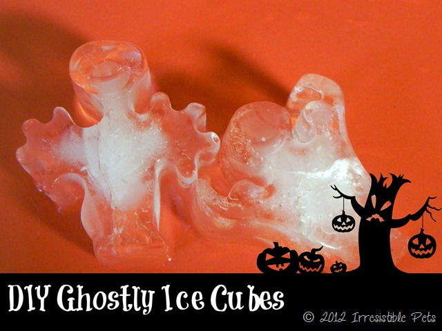 DIY Ghostly Ice Cubes for Pets