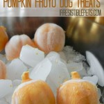 Pumpkin FroYo Bites for Dogs