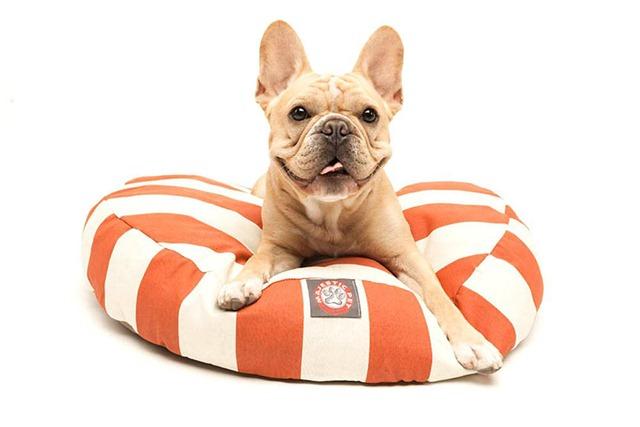 Trip to the Pumpkin Patch - Orange Dog Bed