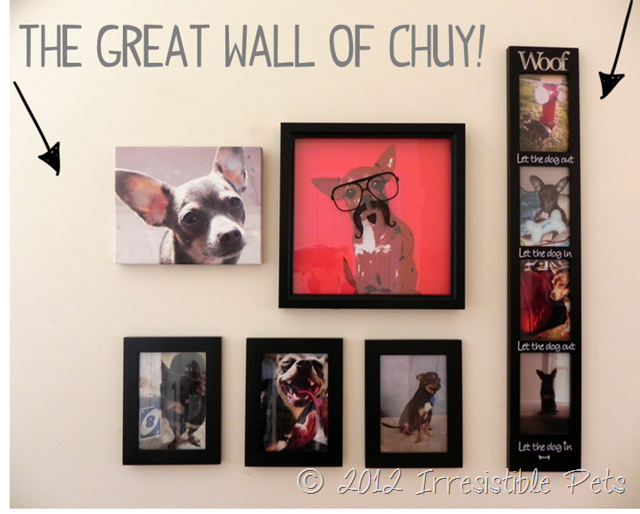 Great Wall of Chuy