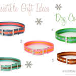 Irresistible Gift Ideas–Striped Dog Collars