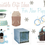 Irresistible Gift Ideas–For New Puppies