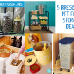 5 Irresistible Pet Food Storage Ideas