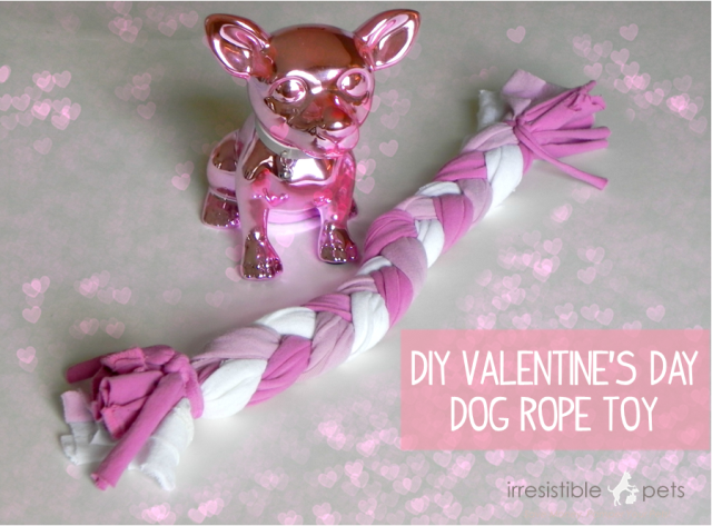 DIY Valentines Day Dog Rope Toy from IrresistiblePets.net