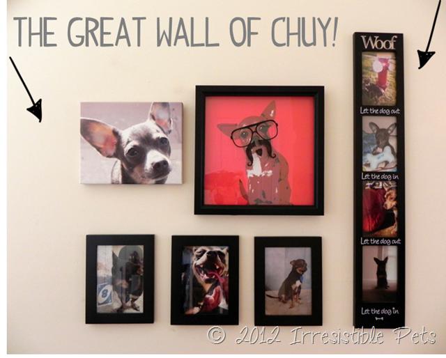 Great-Wall-of-Chuy_thumb