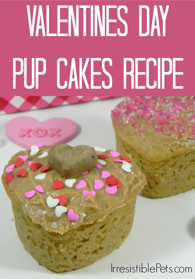 Valentine S Day Cake Recipes Pictures : DIY Valentine s Day Pup Cakes - Irresistible Pets