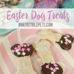 Irresistible Bunny Bones for Easter