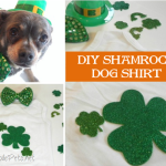 DIY Shamrock Dog Shirt