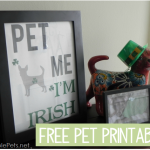 Free Pet Printable {Pet Me I'm Irish}