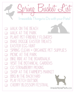 Spring Bucket List for Pet Parents