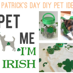 St Patrick's Day DIY Pet Projects with Chuy Chihuahua!
