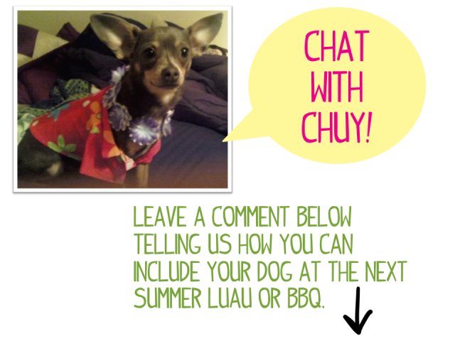 Chat with Chuy