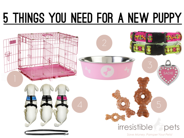 Five things you need for a new puppy via irresistiblepets co