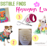 Irresistible Finds {Hawaiian Luau}